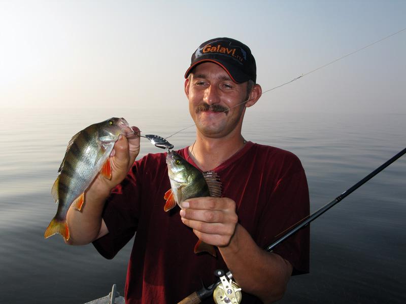 запрет на рыбалку 2016 спб