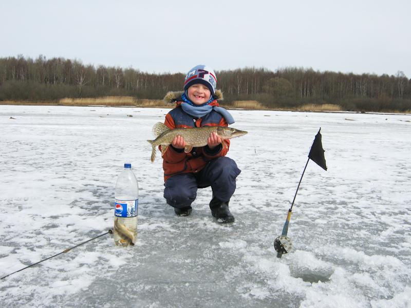 Щука по последнему льду на Рыбинском водохранилище