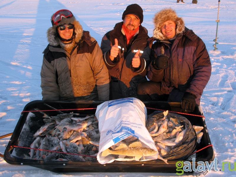 Окунь на блесну зимой на Рыбинском водохранилище.