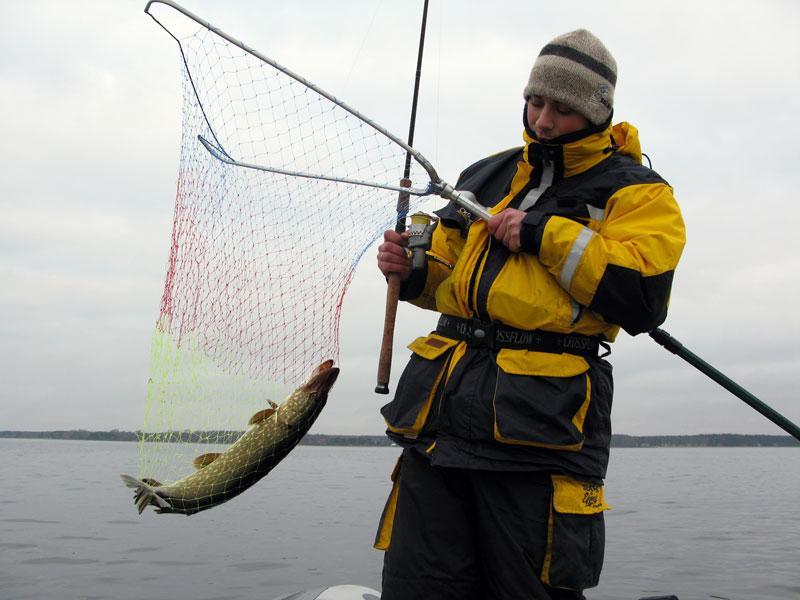 Ловля щуки на спиннинг в ноябре на Рыбинке